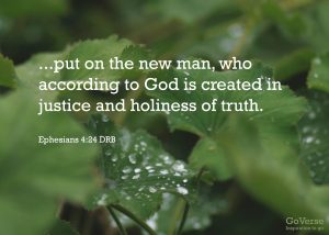 Eph 4.24